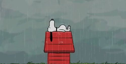 Snoopy In The Rain