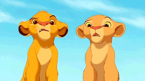 Confused (The Lion King)