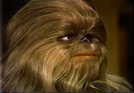 Happy Wookiee (Star Wars Holiday Special)